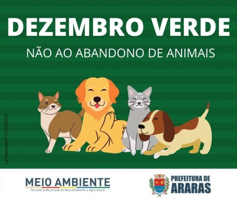 Campanha Dezembro Verde visa evitar o abandono de animais e incentivar a adoação