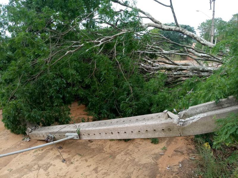 Rajadas ventos derrubam portes de energia e árvores em Araras/SP